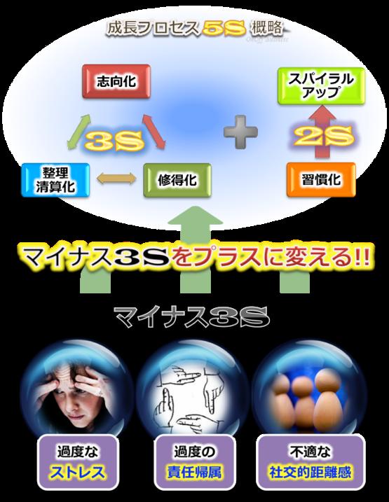マイナス3Sプロセス5S