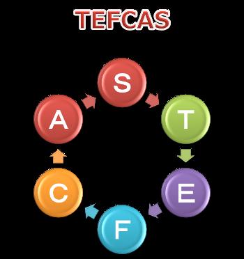 tefcas思考,トニーブザン提唱